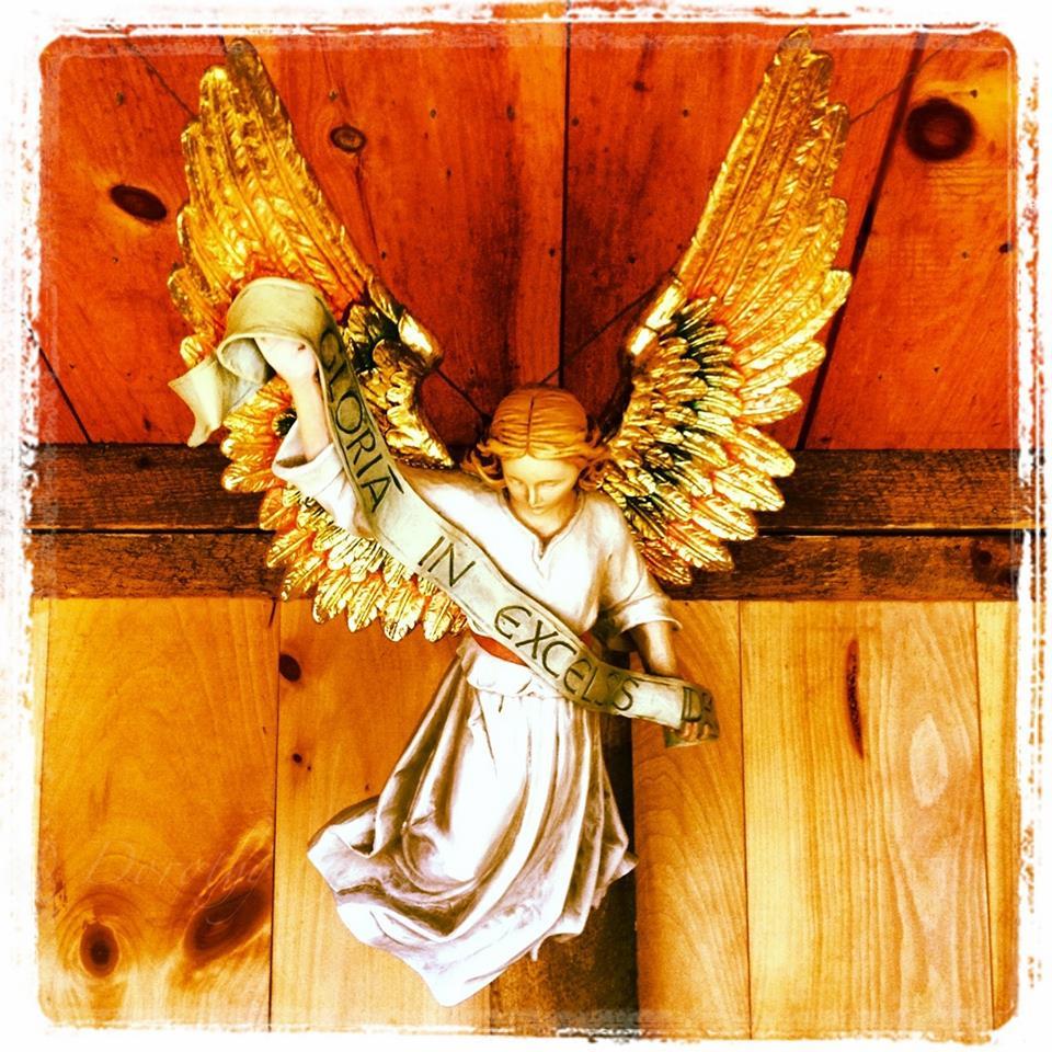 angel fear not