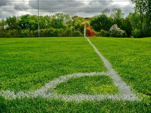 Soccer Field, by Shena Tschofen