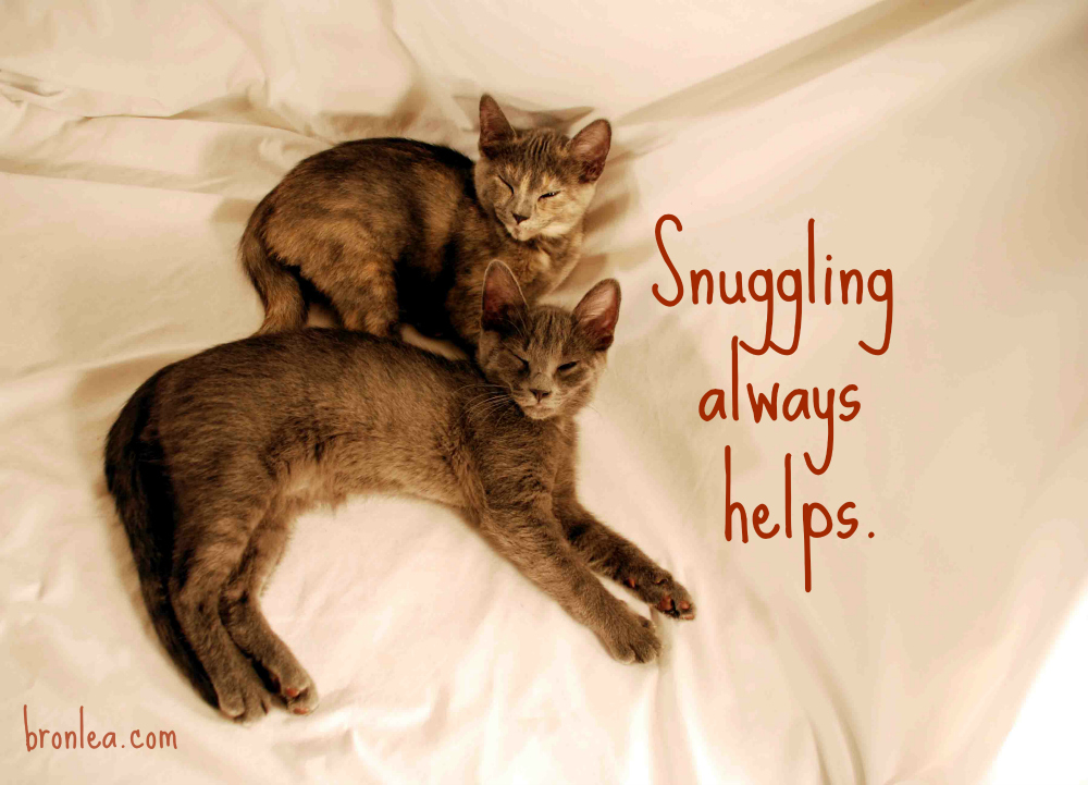 Snuggling Always Helps