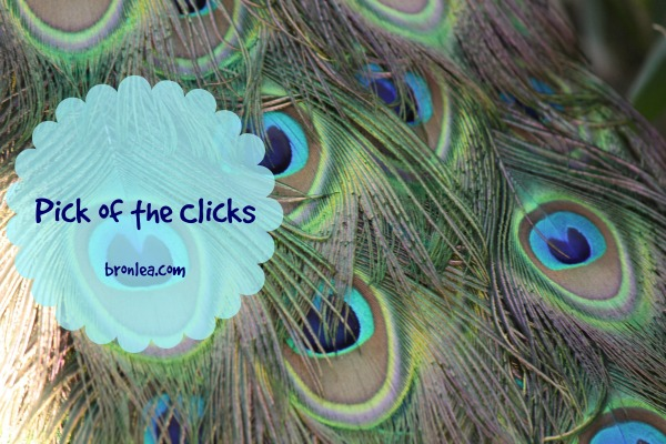 peacock pick of the clicks